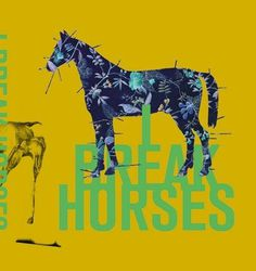 I break horses #album #cover #illustration