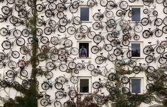 tumblr_l7fe66pF1E1qd6hzlo1_500.jpg (500×324) #bike