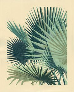 illustration #palm #palm tree #plant #leaf #frond #botany