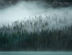 Paul Zizka #inspiration #photography #landscape
