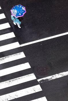 Yoshinori Mizutani | PICDIT