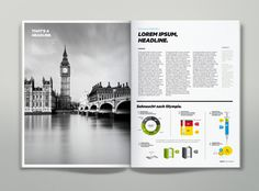 Magazine Infographics on the Behance Network