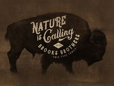 Brooks Brothers Typeface #bison  #buffalo  #font  #handmade  #lettering  #old  #retro  #script  #type  #typeface  #vintage