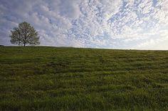 Landscape Photography by Vicki C. » Creative Photography Blog #inspiration #photography #landscape