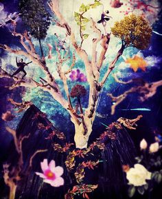 Tree Dance | Photomanipulation Work  | #photomanipulation #surreal #dance #art #fantasy #color