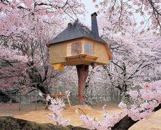 Teahouse Tetsu Treehouse In Hokuto City, Japan. #treehouse