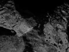 1 #photo #johansson #digital #photography #art #daniel