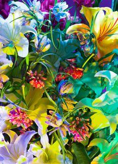 Torkil Gudnason | PICDIT #photo #color #photography #art #flowers