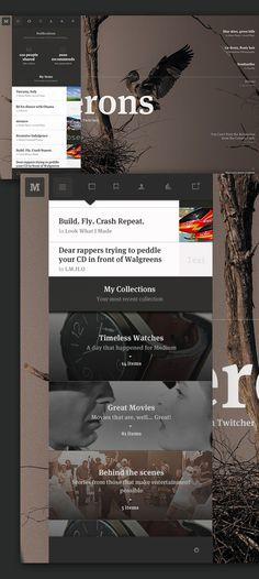 Medium: Collection Concept on Web Design Served