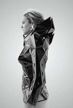 parametric architectural techniques in clothing