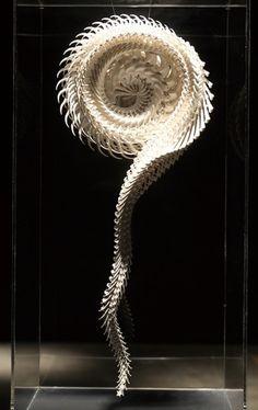 Motohiko Odani | Colossal #skeleton #sculpture #odani #motohiko #bones #vertebrae