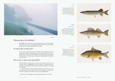 amsterdam lake magazine photography fish