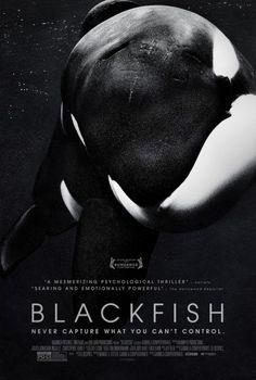 Blackfish #movie #gravillis #inc #poster #film #blackfish