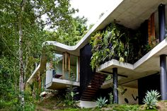 Suspended stairs Planchonella House,© Sean Fennessy #stair