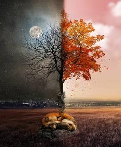 Creative and Dreamlike Photo Manipulations by Natacha Einat