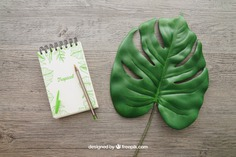 Notepad and leaf Free Psd. See more inspiration related to Mockup, Leaf, Paper, Doodle, Pencil, Pen, Mock up, Notes, Notepad, Up, Note paper, Objects, Things, Composition and Mock on Freepik.