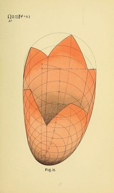 B. W. Betts' Geometrical Psychology | The Public Domain Review