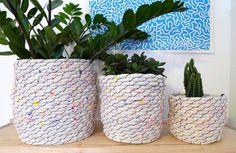 plant cozy splatter_sm #rope #plant