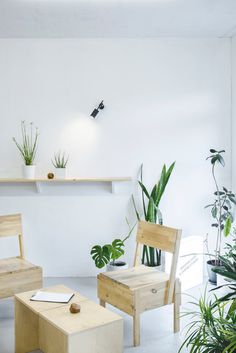 Lounge area with plants and birch furniture. Crooked Nose & Coffee Stories by Inga PieslikaitÄ—. Photo by Darius Petrulaitis. #birch