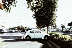 melnoelle photography #beetle #vw #vintage car #bug