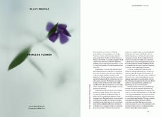 storepage3_grande.gif (GIF Image, 600×439 pixels) #wilder #minimal #layout #magazine #typography