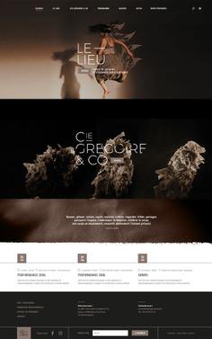 La Compagnie Gregoire & Co et Dezzig - Dezzig
