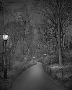 Photographer Michael Massaia Captures Haunting Images Of Central Park When No One Is Around