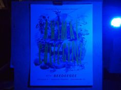 Animal Collective | BLDG #rgb #animal #poster #collective #cmyk #light