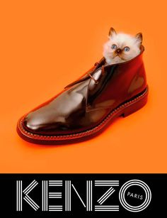kenzo_fw13_campaign_5 #photography