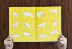 Oto kot #illustration #white #yellow #cat #flyleaf