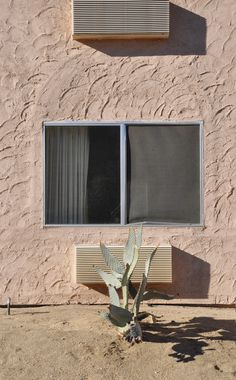 _CA+ __california ___yucca valley, motel super 8 PHOTOGRAPHIE © [ catrin mackowski ]