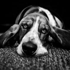 He Snores with his Eyes Open | Flickr: Intercambio de fotos