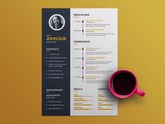 Free Creative Resume Template with Elegant Timeline Design