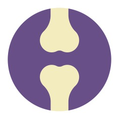 See more icon inspiration related to joint, leg, Femur, bones, medical, anatomy and body parts on Flaticon.