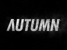 Typeverything.com - Autumn by Simon Ã…lander. - Typeverything #typography