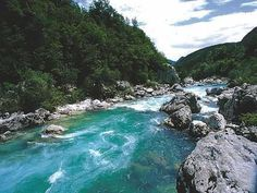 The Soca River #river #soca #the
