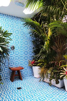 AdriannaLopezBathroom GranadaTileFez HR copy #interior design #decoration #decor #deco #tiles #atrium #plants #sun room #skylight
