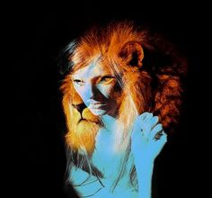 FFFFOUND! | wicked lovely #lion #photography #portrait