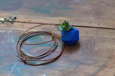 3D Printed Jewels of Planters