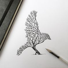 Beautiful Tree / Bird illustration