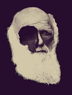 Todos os tamanhos | darwin | Flickr – Compartilhamento de fotos! #illustration #darwin