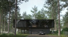 Family house. Margavos st., Kaunas - dizonaurai #render