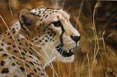 A different interpretation of realistic art - Angel Ivanov's paintings #cheetah #realism #portrait #painting #paintings #art #animal #oil