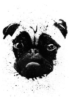 #pug #dog #ink #face #cute #poster