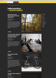HallemaVanLoon #web