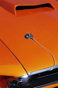mustang, orange