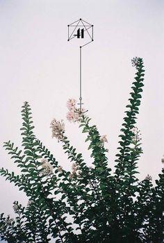 Trent Alexander Hernandez #inspiration #design #flower #art