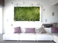 Green Vegetable Pictures By Sundar Italia - #decor, #interior, #homedecor,