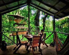 "CJWHO â""¢ (finca bellavista: a sustainable treehouse...) #design #architecture #photography #landscape #tree house #costa rica"