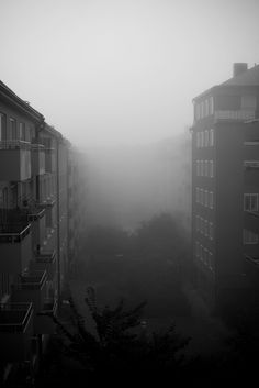 Fog Art Print at Søciety6 #photography #fog #blackandwhite #stockholm #sweden #rickardarvius